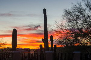 First-Tucson-sunset