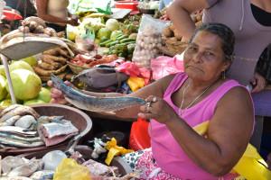 Bilwi market 1 (1 of 1)