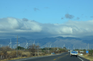 Windmills2 (1 of 1)